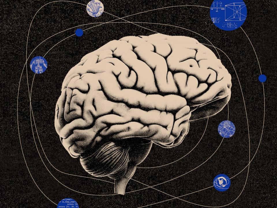 mózg i pamięć